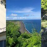 メールマガジン第97号:「世界自然遺産小笠原と硫黄島を訪ねて」
